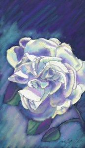 White Rose chalk pastel drawing - floral cross stitch designs sample drawing