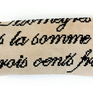 Sunglass case French cross stitch