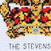 Creating a Dynasty family cross stitch pattern