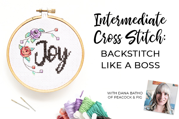 cross stitch backstitch stitching class