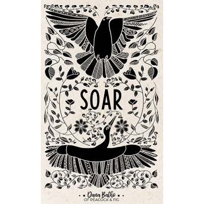 Soar-illustration