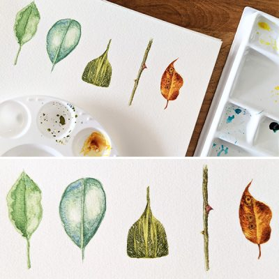 Botanical Illustration with Watercolors